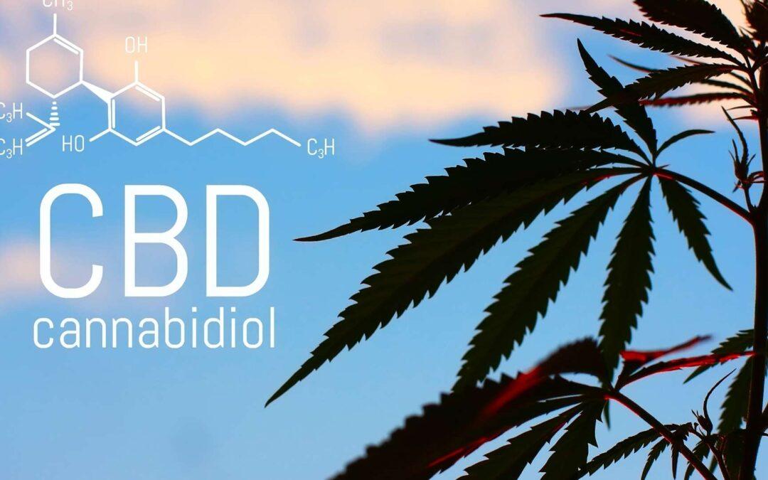 Qu'est-ce que le CBD ? – Explication complète et claire sur le CBD (Cannabidiol)